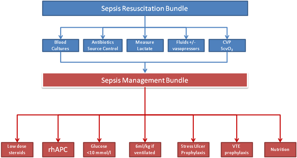sepsis ssc management